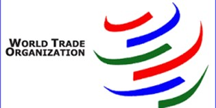 WTO images 2